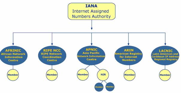 internet assigned numbers Maintain ultimate stewardship of the internet assigned numbers authority (iana), which coordinates some of the key technical underpinnings of the internet, such as managing the dns root iana also controls specific tlds, such as arpa.